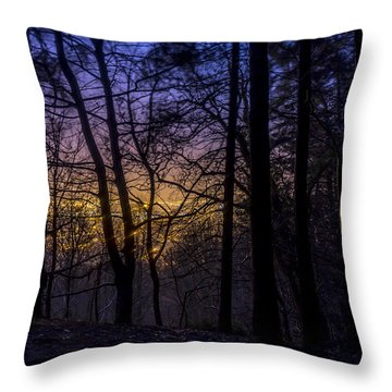 Belfast Through The Trees Part 1 Throw Pillow