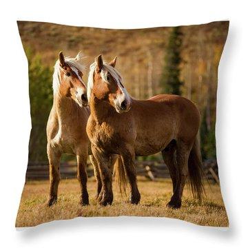 Belgian Draft Horses Throw Pillow