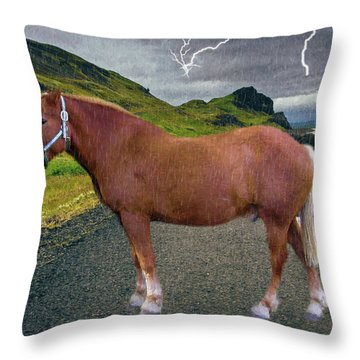 Belgian Horse Throw Pillow