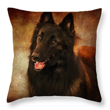 Belgian Tervuren Shepherd Throw Pillow