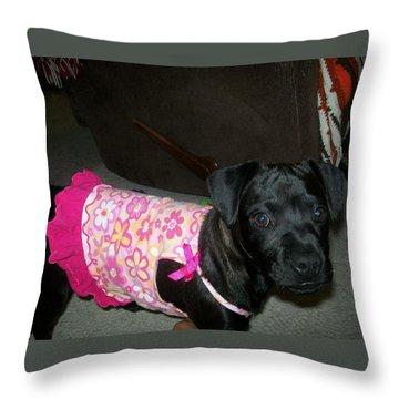 Bella In Swimsuit Throw Pillow by Jewel Hengen