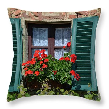 Bella Italian Window  Throw Pillow