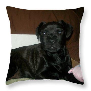 Bella Throw Pillow by Jewel Hengen