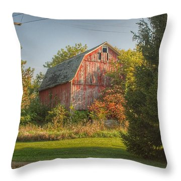 0028 - Belle River Red I Throw Pillow