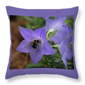 Throw Pillow featuring the photograph Bellflower And Bee  by Marie Hicks