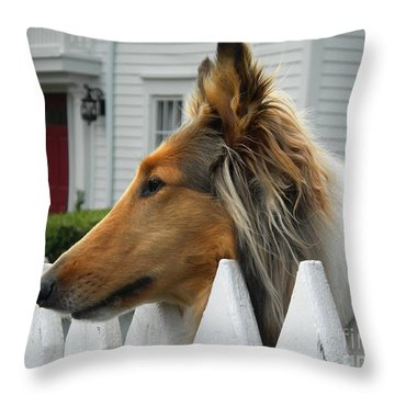 Bellingham Collie Throw Pillow