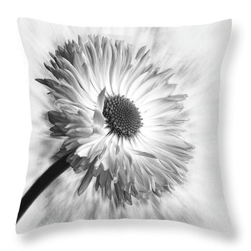 Bellis In Mono  #flower #flowers Throw Pillow
