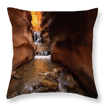 Throw Pillow featuring the photograph Beloved by Dustin LeFevre