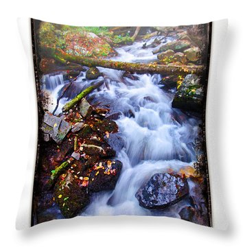 Below Anna Ruby Falls Throw Pillow by Peter Muzyka