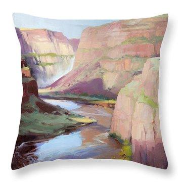 Below Palouse Falls Throw Pillow