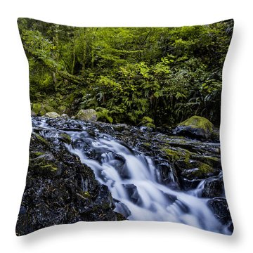 Below Pony Tail Falls Throw Pillow
