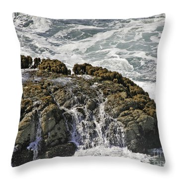 Below Salmon Creek Throw Pillow