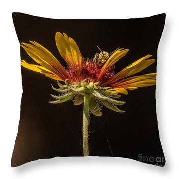 Below The Bee's Knees Throw Pillow