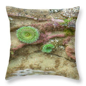 Below The Surface Throw Pillow by Kristina Rinell
