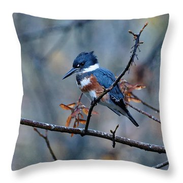 Belted Kingfisher Perch Throw Pillow