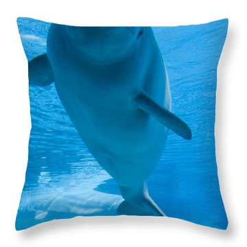 Beluga Whale In A Marine Park, Ontario Throw Pillow by Darwin Wiggett