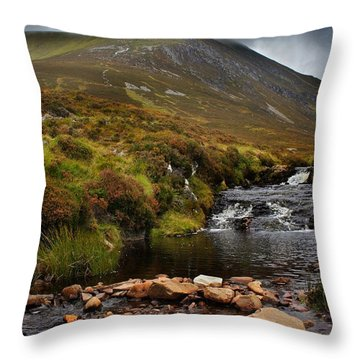 Ben Wyvis Throw Pillow