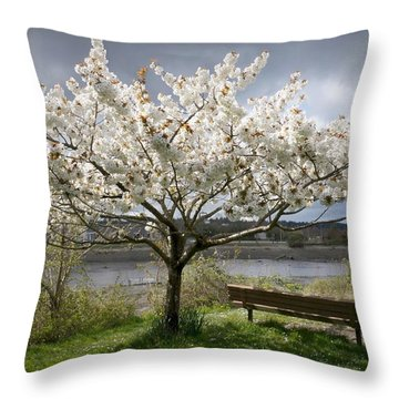 Throw Pillow featuring the photograph Bench And Blossoms by Patricia Strand