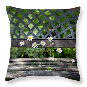 Throw Pillow featuring the photograph Benched by Aaron Aldrich
