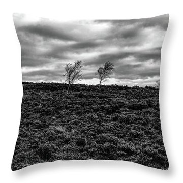 Bending To The Wind Throw Pillow
