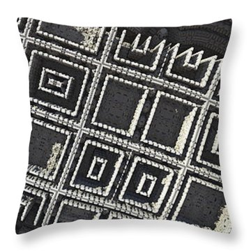 Beneath The Ruins Throw Pillow