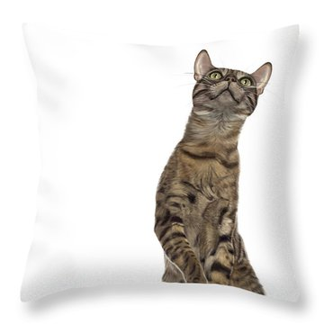 Bengal Cat With Butterfly Throw Pillow