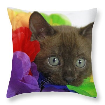 Bengal Colors Throw Pillow by Shoal Hollingsworth