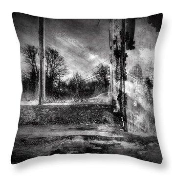 Benjamin Nye Window Throw Pillow