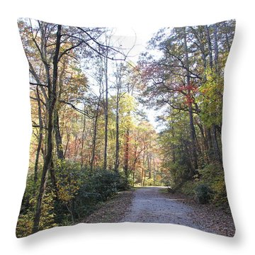 Bent Creek Road Throw Pillow