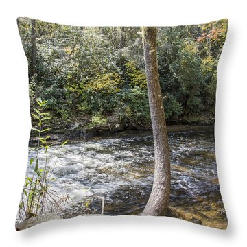 Bent Tree River Throw Pillow