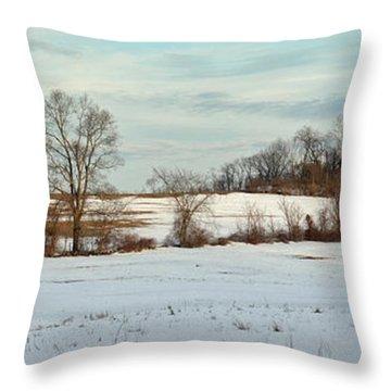 Berkshire Meadow - Winter Panoramic Throw Pillow