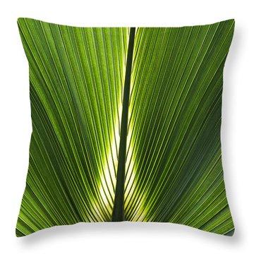 Bermuda Palmetto Palm Leaf Throw Pillow