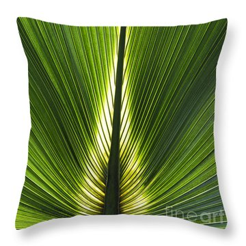 Bermuda Palmetto Palm Leaf Throw Pillow