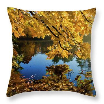 Bernharts Dam 15-244 Throw Pillow by Scott McAllister