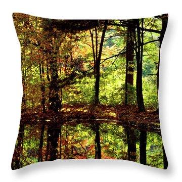 Bernharts Dam Fall 006 Throw Pillow