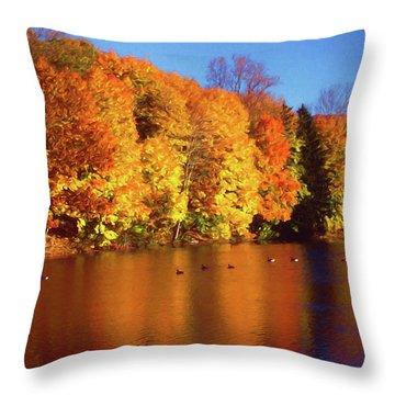 Bernharts Dam Fall 008 Throw Pillow