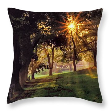 Bernharts Dam Fog 001 Throw Pillow by Scott McAllister