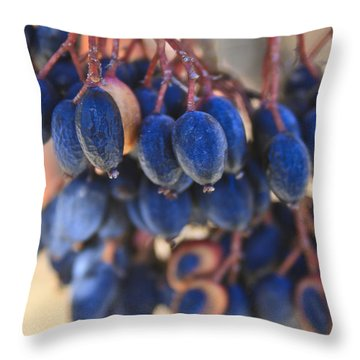 Berries Blue Too Throw Pillow
