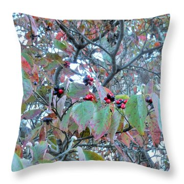 Berries Throw Pillow by Kay Gilley