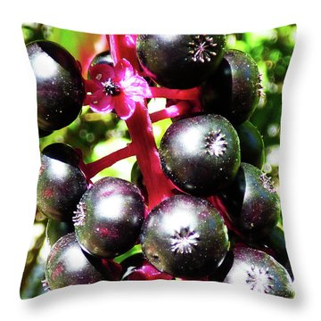 Wild Purple Pokeweed Berries  Throw Pillow