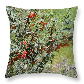 Berries On The Vine Throw Pillow