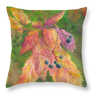 Berry Challenge Throw Pillow by Denise Hoag