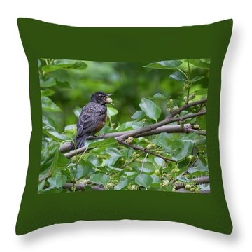 Throw Pillow featuring the photograph Berry Good by Chris Scroggins