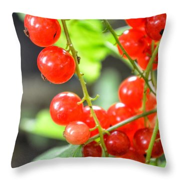 Throw Pillow featuring the photograph Berry Good by Isabella F Abbie Shores FRSA