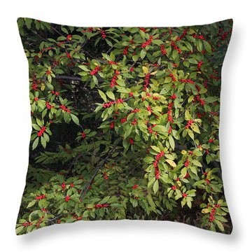 Berry Spread Throw Pillow