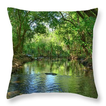 Berry Springs Throw Pillow