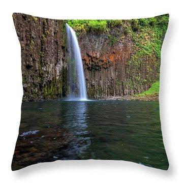 Beside Abiqua Falls In Summer Throw Pillow by David Gn