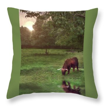 Throw Pillow featuring the photograph Beside Still Waters by Mark Fuller