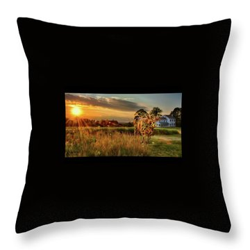Throw Pillow featuring the photograph Bessie by Mark Fuller