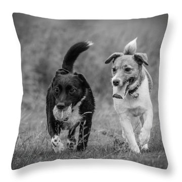 Throw Pillow featuring the photograph Best Buddies by Nick Bywater